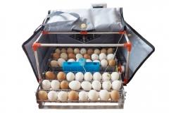 Инкубатор для яиц Micro 50