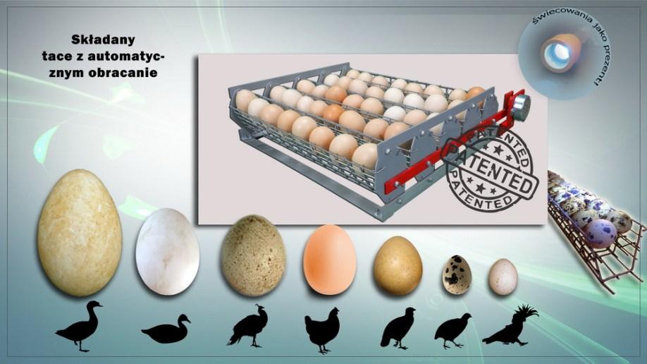 Wyjmowane tace automatyczne jajka coup z kaset -Incubator Broody Zoom