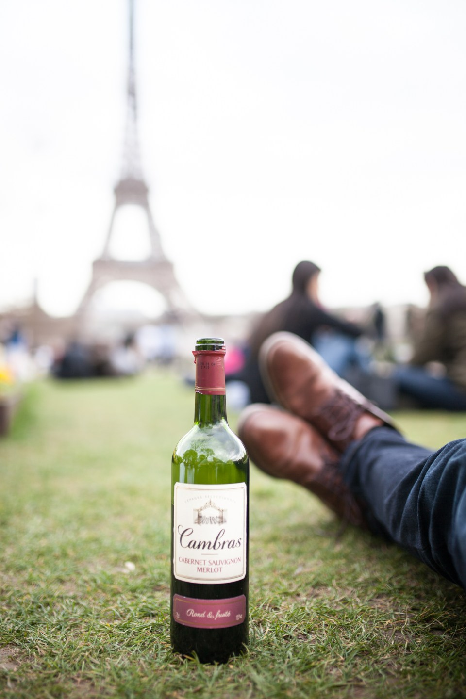 bottle of wine under the Eiffel Tower Paris France