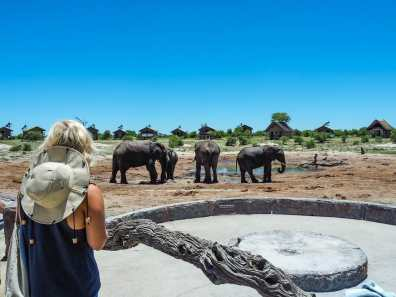 Nicole watching the elephants