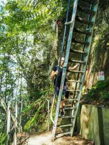 Diana climbing the ladders