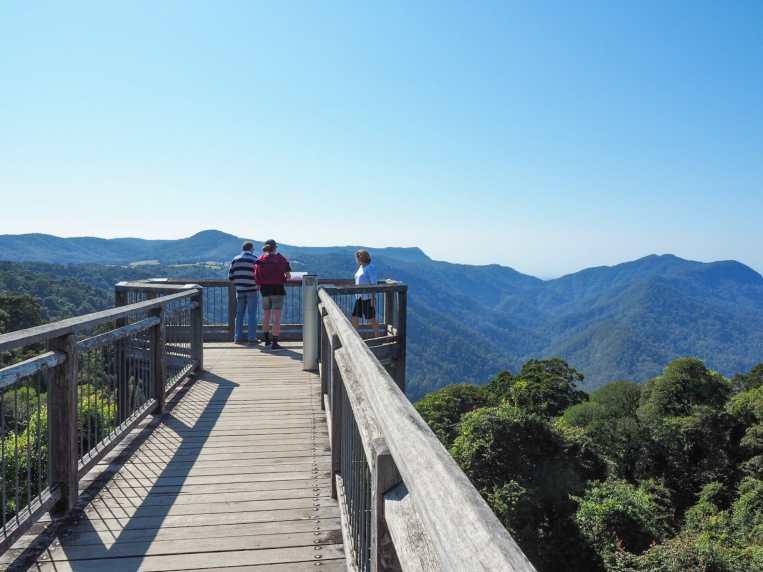 Dome Mountain and the Dorrigo Rainforest