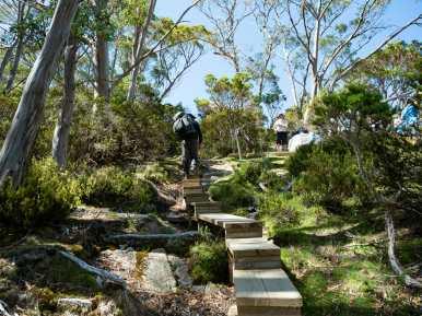 Climbing up to Pelion Hut
