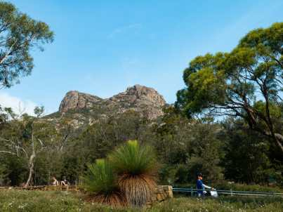 View of Mt Amos from the carpark