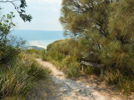 Cape Queen Elizabeth trail