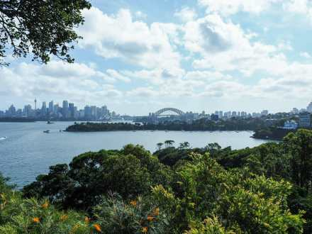 The view from Taronga Zoo