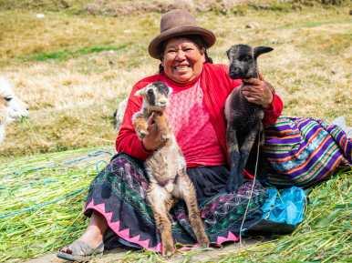 Baby goats at Tambomachay