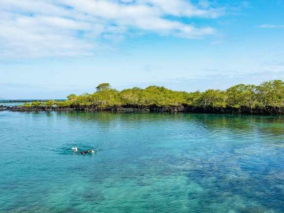 Snorkeller in blue water Concha de la Perla Galápagos