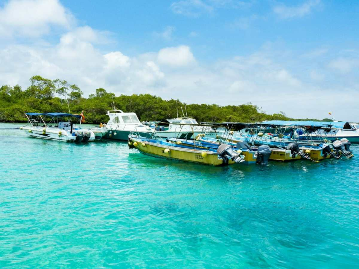 Boats lined up in clear blue water Galápagos