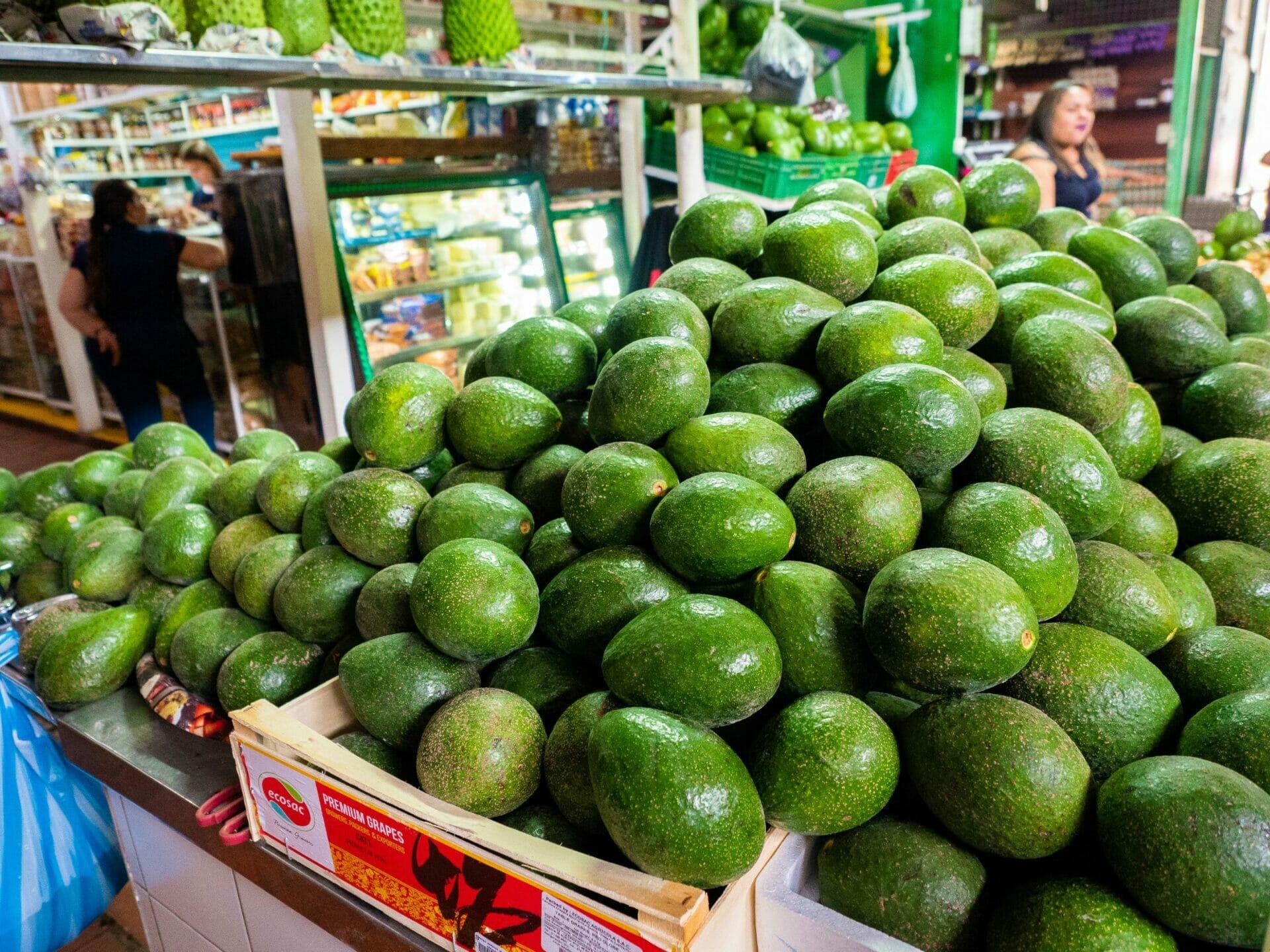Avocados and fresh fruit at Casa de Mercado San Gil