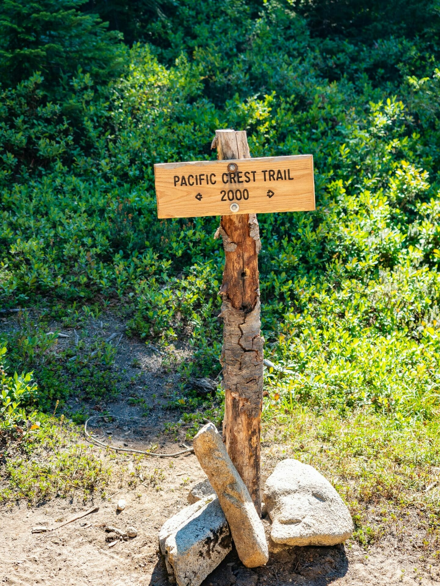 Hiking the Pacific Crest Trail Stevens Pass