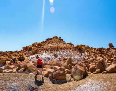Petrified Forest National Park best hikes itinerary