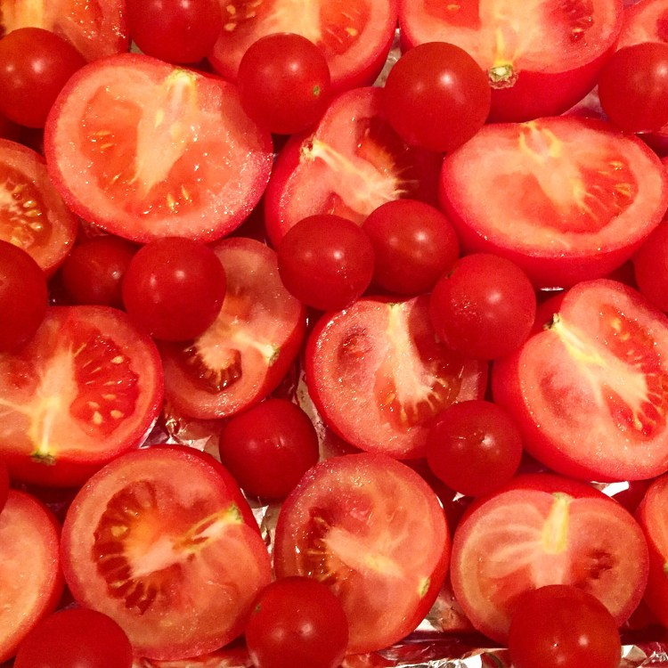 which tomatoes make the best tomato soup