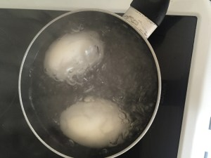 boiling goose eggs
