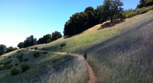 hiking pate