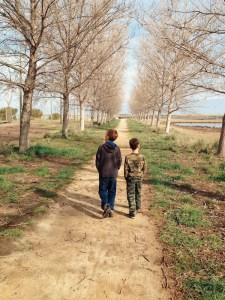 boys walking in nature