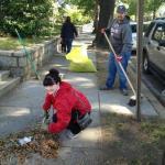 Neighborhood Clean-up