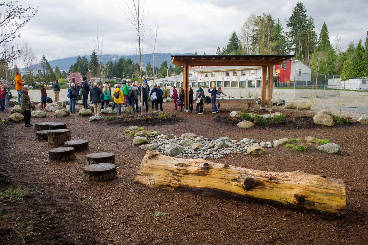 Green Schoolyards Offer Physical and Mental Health Benefits for Children