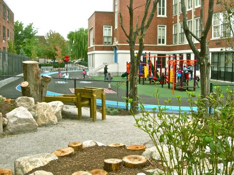 Green Schoolyard Transformation in Boston