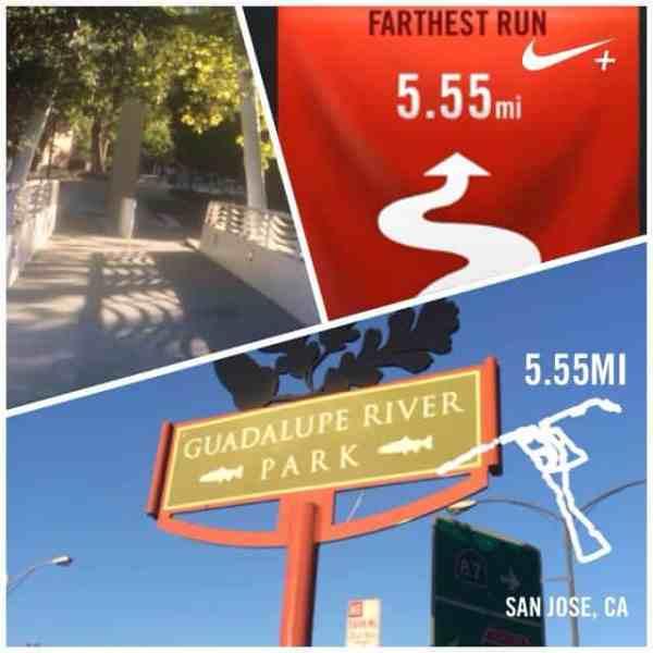 BAM Half Training: Hydration & California Running + Vlog