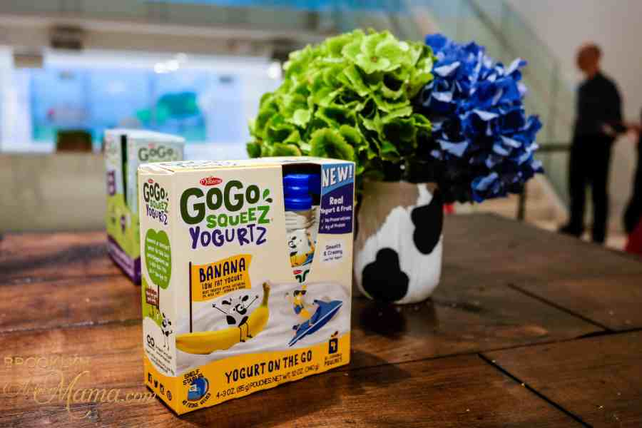 Step Up Your Snack Game With GoGo Squeez Yogurtz!