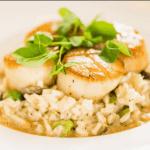 10 Disney World Fine Dining and Fancy Signature Restaurants