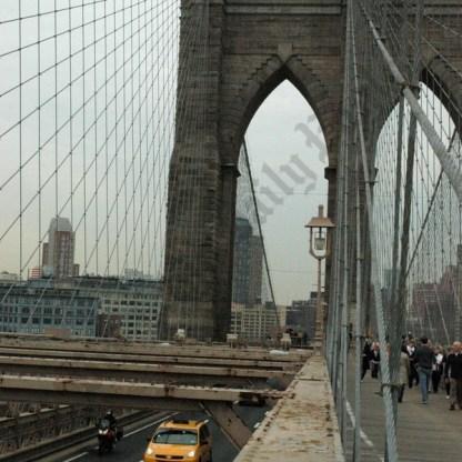 Brooklyn Bridge Views 04/09/2009 - Brooklyn Archive