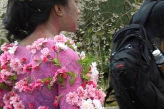 Sakura Matsuri at the Brooklyn Botanic Garden 2007 - Brooklyn Archive