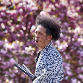 Sakura Matsuri at the Brooklyn Botanic Garden 2016 - Brooklyn Archive