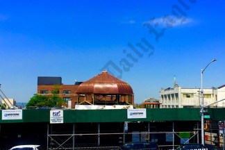 Weir Greenhouse, May 2017 - Brooklyn Archive