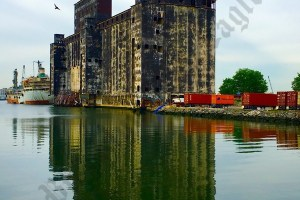 Red Hook Shoreline, May 2017 - Brooklyn Archive