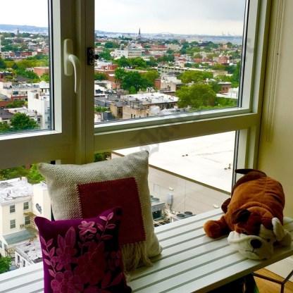 33 Bond Street, July 2017 - Brooklyn Archive