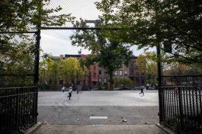 Carroll Gardens, November 2018 - Brooklyn Archive
