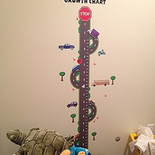 Play Room Decor– Growth Charts