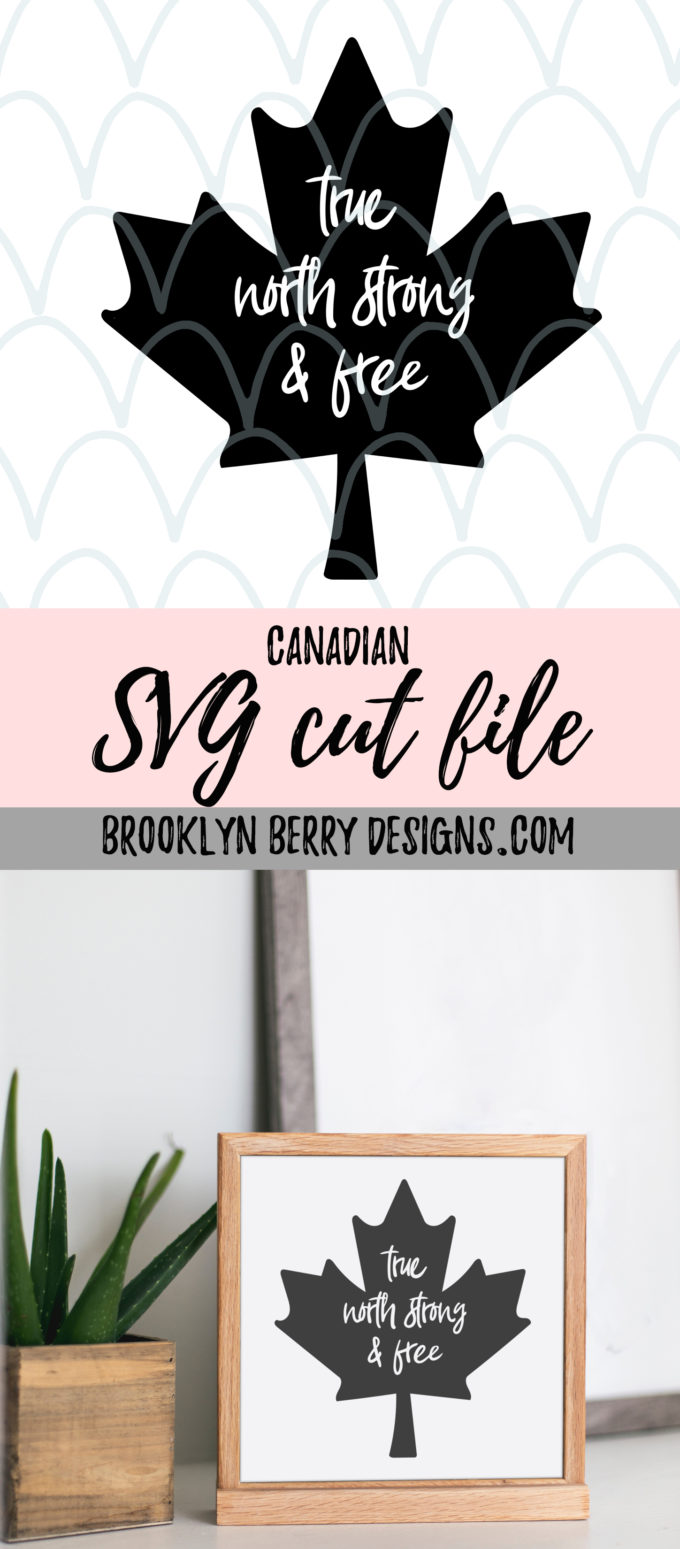 Free Patriotic SVG File and free canada day svg file to make your own patriotic shirts for Canada Day and 4th of July. via @brookeberry