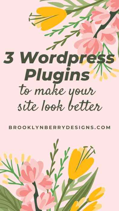 Best WordPress Plugins to make your site look great. 3 plugins worth checking out.