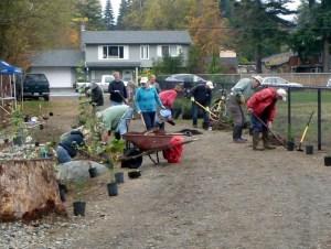 Planting October 2015