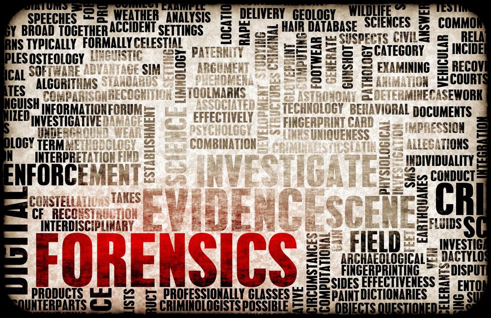 Image result for forensic arguments