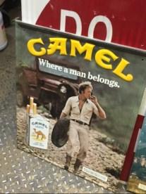 camel-metal-sign