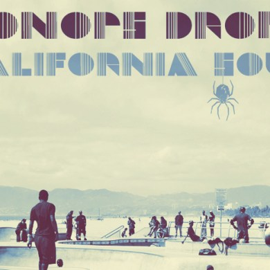 Photo of Oonops Drops – California Soul