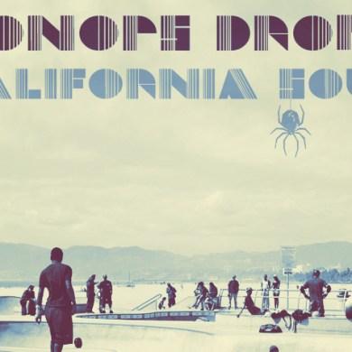 Photo of Oonops Drops – California Soul