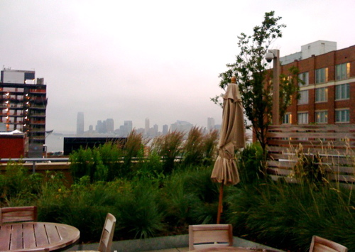 thecaledonia_roofgarden_chelsea_highline