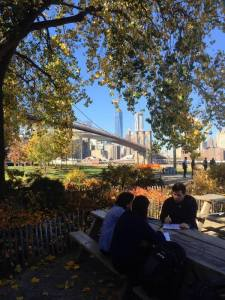 Outdoor class in Brooklyn Bridge Park