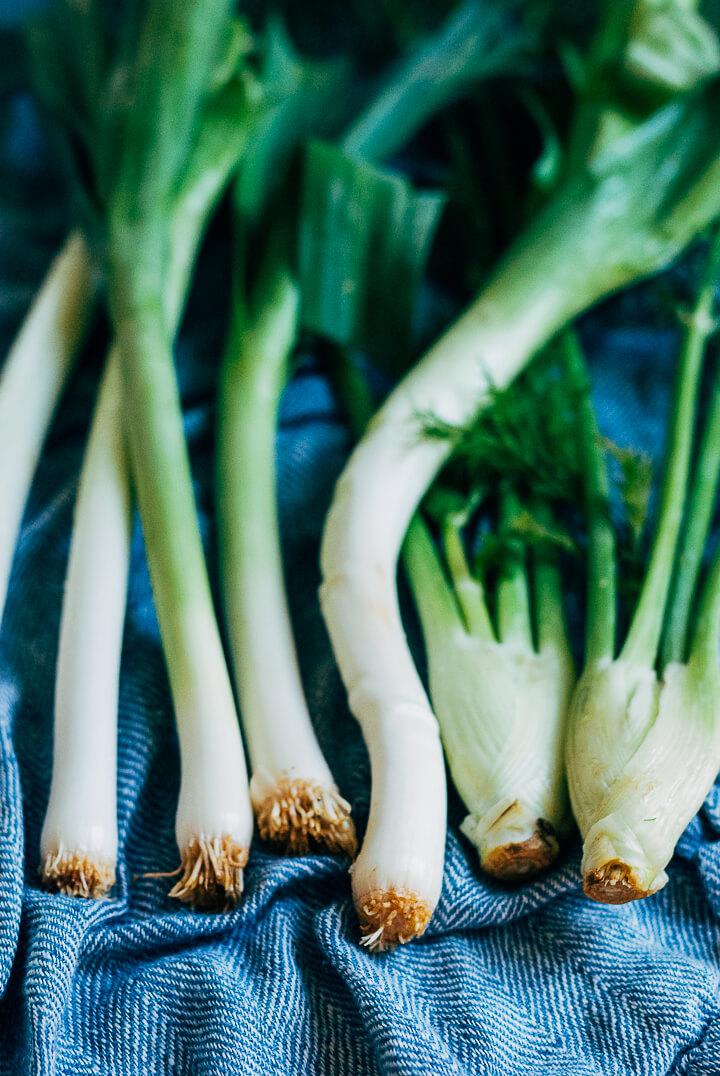 potato, leek and fennel soup // brooklyn supper