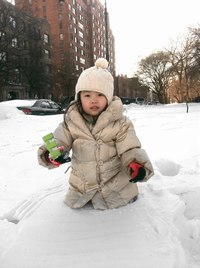 Snow Days in Brooklyn