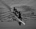Rowing in a boat race
