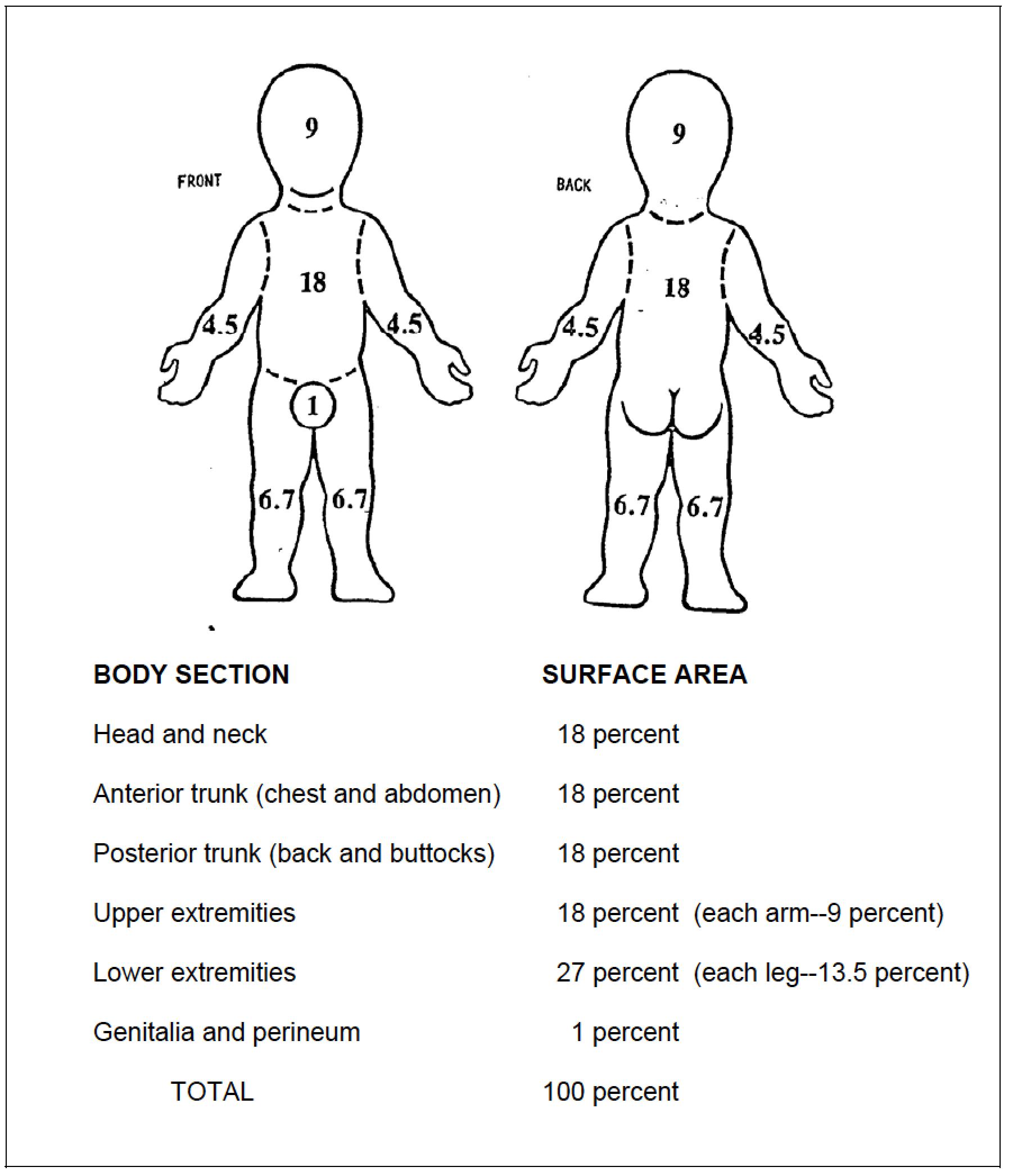 Child Burn Chart