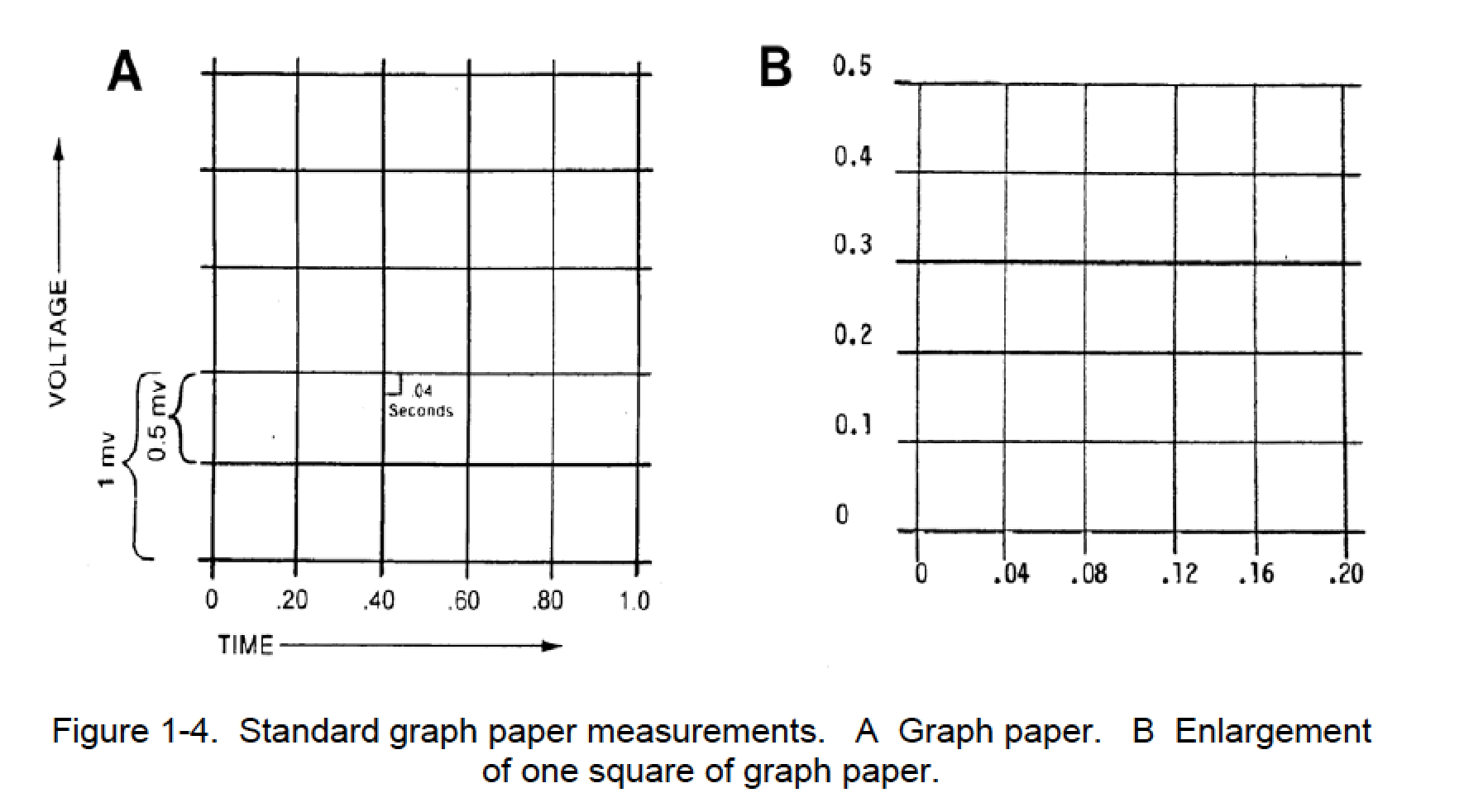 Worksheet Standard Graph Paper Grass Fedjp Worksheet
