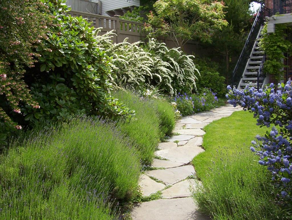 Seattle Landscape Architecture