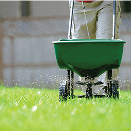 <p>With both synthetic and organic options available, along with pest control, lawn mowing, and more we can tailor a maintenance plan to your landscape needs.</p>